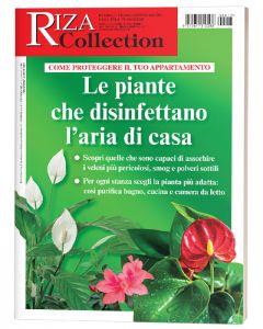 Riza Collection: Le piante che disinfettano l'aria di casa